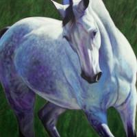 Патрисия Пауэрс (Patricia Powers) - фото passion-200x200, главная Конные истории Разное , конный журнал EquiLIfe