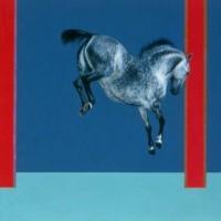 Патрисия Пауэрс (Patricia Powers) - фото quest-200x200, главная Конные истории Разное , конный журнал EquiLIfe