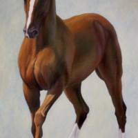 Патрисия Пауэрс (Patricia Powers) - фото udon-200x200, главная Конные истории Разное , конный журнал EquiLIfe