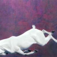 Патрисия Пауэрс (Patricia Powers) - фото white72-200x200, главная Конные истории Разное , конный журнал EquiLIfe