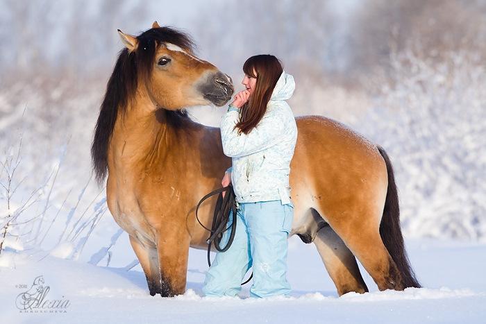 Валерия Короткевич: Моя анималистика - фото y_d042b10e, главная Интервью Фото , конный журнал EquiLIfe