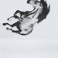 Майкл Заврос (Michael Zavros) - фото -200x200, главная Разное Фото , конный журнал EquiLIfe