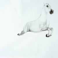 Майкл Заврос (Michael Zavros) - фото 2-200x200, главная Разное Фото , конный журнал EquiLIfe