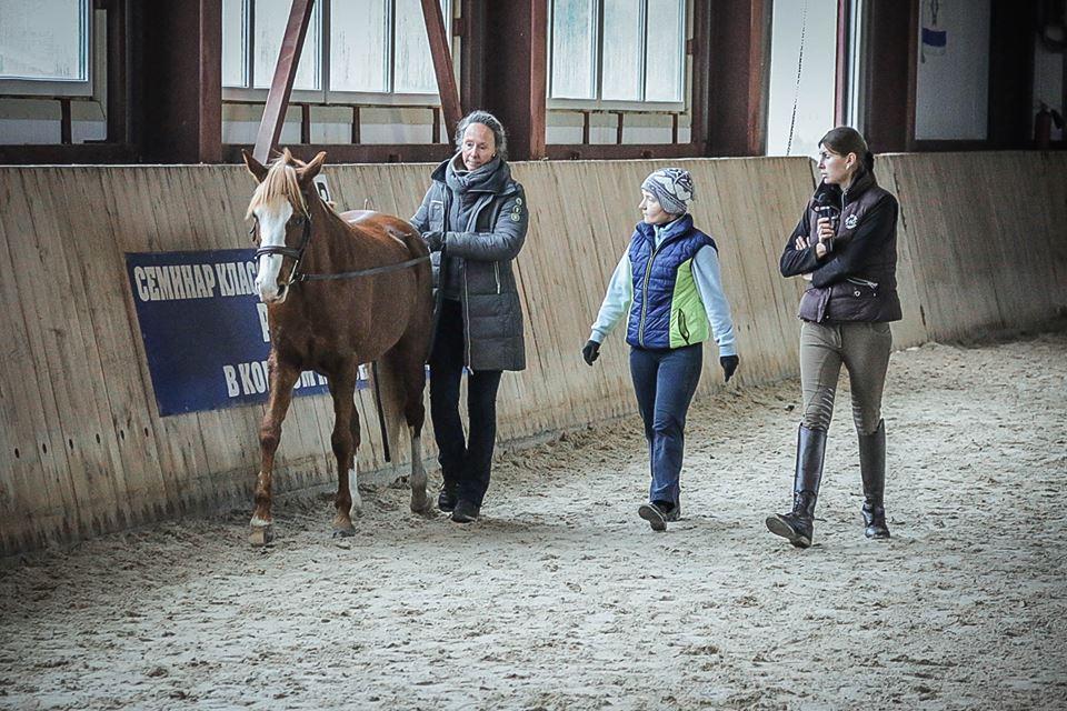 Семинар Saskia Gunzer или полезные советы по работе на вожжах  - фото 11012731_1015875438465033_3038770166651382222_n, главная Разное Тренинг , конный журнал EquiLIfe