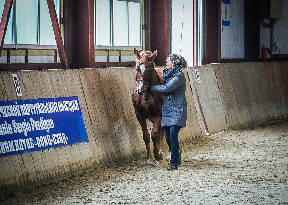 Семинар Saskia Gunzer или полезные советы по работе на вожжах  - фото 12190797_1015875765131667_4173936928389604265_n, главная Разное Тренинг , конный журнал EquiLIfe