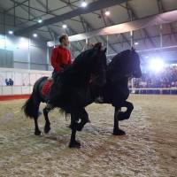 Эквирос 2015. Фоторепортаж. - фото BK0R6890_resize-200x200, главная Разное События Фото , конный журнал EquiLIfe