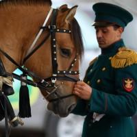 Эквирос 2015. Фоторепортаж. - фото BK0R6892_resize-200x200, главная Разное События Фото , конный журнал EquiLIfe