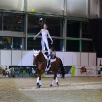 Эквирос 2015. Фоторепортаж. - фото BK0R7152_resize-200x200, главная Разное События Фото , конный журнал EquiLIfe