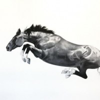 Майкл Заврос (Michael Zavros) - фото IMG_0694adj-200x200, главная Разное Фото , конный журнал EquiLIfe