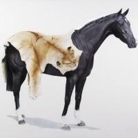 Майкл Заврос (Michael Zavros) - фото MichaelZavros16-200x200, главная Разное Фото , конный журнал EquiLIfe