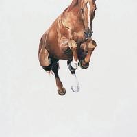 Майкл Заврос (Michael Zavros) - фото e892c6bcbc5f5dd468c10a14de5173bf-200x200, главная Разное Фото , конный журнал EquiLIfe