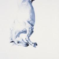 Майкл Заврос (Michael Zavros) - фото tumblr_mg0ecc9fyG1qbmgeto4_1280-200x200, главная Разное Фото , конный журнал EquiLIfe