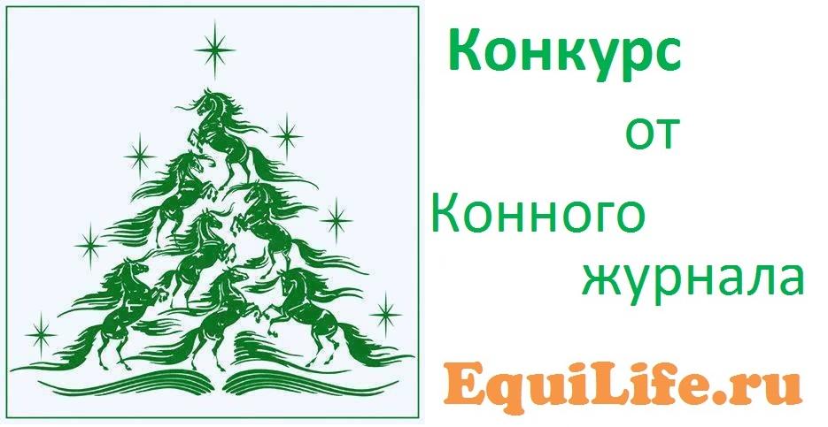 Рождественский конкурс от EquiLife.ru - фото , главная Разное , конный журнал EquiLIfe