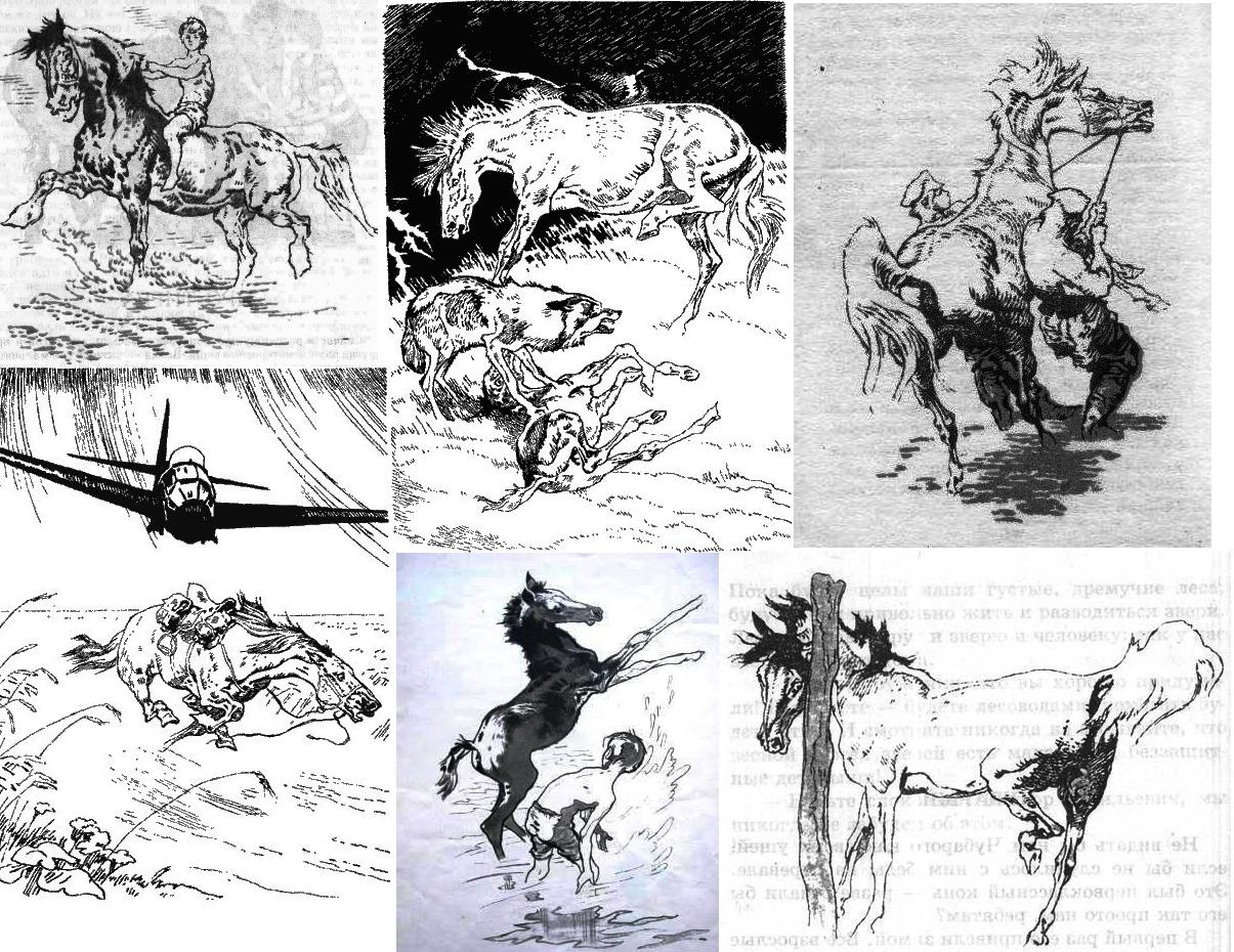Иллюстратор Игорь Годин - фото 1, главная Разное Фото , конный журнал EquiLIfe