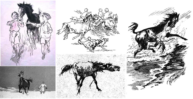 Иллюстратор Игорь Годин - фото 2, главная Разное Фото , конный журнал EquiLIfe