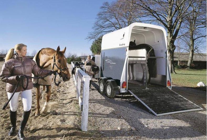 Перевозка лошадей. 8 правил. Первые ТРИ. - фото 1385289807_1, главная Конюшня Содержание лошади Тренинг , конный журнал EquiLIfe