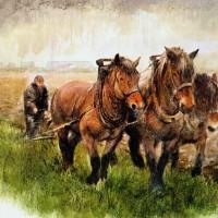 Художник Рин Поортвлит (Rien Poortvliet)   - фото 0336c32b1ff60d2da72726f2b6e50401-200x200, главная Разное , конный журнал EquiLIfe