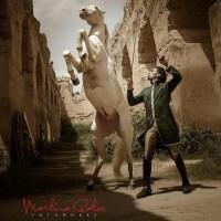 Садек Эль Баджауи - фото 11245509_928300823856954_640243610435616510_n-200x200, главная Разное Фото , конный журнал EquiLIfe