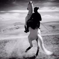 Садек Эль Баджауи - фото 12141517_1008138529206516_8464066208801020381_n-200x200, главная Разное Фото , конный журнал EquiLIfe