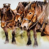 Художник Рин Поортвлит (Rien Poortvliet)   - фото 1355627252-1144958-www.nevsepic.com_.ua_-200x200, главная Разное , конный журнал EquiLIfe
