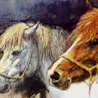 Художник Рин Поортвлит (Rien Poortvliet)   - фото a52ec671a9f6012378c7f7c1f9d86400-200x200, главная Разное , конный журнал EquiLIfe