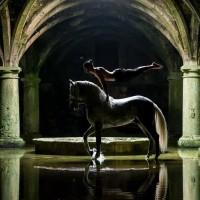 Садек Эль Баджауи - фото tumblr_o0ym6aoIRf1scmx8ro1_1280-200x200, главная Разное Фото , конный журнал EquiLIfe
