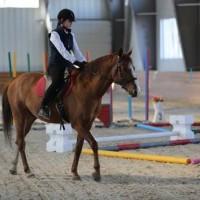 Необычные соревнования в Казахстане - фото 10371461_1039361166129055_6843894043971043848_n-200x200, Новости События , конный журнал EquiLIfe