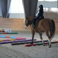 Необычные соревнования в Казахстане - фото 12814797_1039361162795722_2037674053412166384_n-200x200, Новости События , конный журнал EquiLIfe