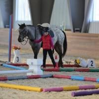 Необычные соревнования в Казахстане - фото 1613943_1039361159462389_6869353264708409704_n-200x200, Новости События , конный журнал EquiLIfe