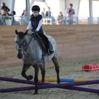 Необычные соревнования в Казахстане - фото 1935228_1039361112795727_908781659233428159_n-200x200, Новости События , конный журнал EquiLIfe
