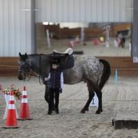Необычные соревнования в Казахстане - фото 535071_1039361069462398_291288161481744368_n-200x200, Новости События , конный журнал EquiLIfe