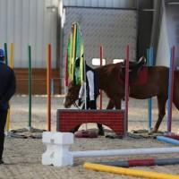 Необычные соревнования в Казахстане - фото 62366_1039361119462393_3072616969222131901_n-200x200, Новости События , конный журнал EquiLIfe