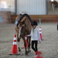 Необычные соревнования в Казахстане - фото 943861_1039366502795188_4007182193197678074_n-200x200, Новости События , конный журнал EquiLIfe
