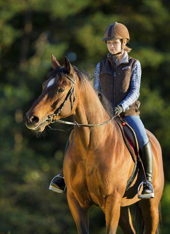 Что такое способности к верховой езде? - фото horse-journal____com, главная Разное Тренинг , конный журнал EquiLIfe
