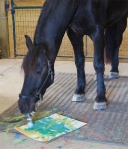 Лошади-художники - фото 202069_tribune_horses-259x300, главная Интересное о лошади Поведение лошади Разное , конный журнал EquiLIfe