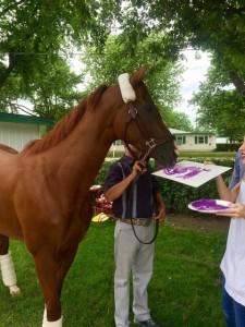 Лошади-художники - фото 4170-225x300, главная Интересное о лошади Поведение лошади Разное , конный журнал EquiLIfe