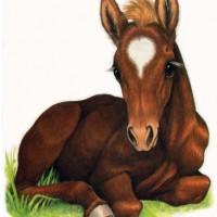 Художница Робин Джеймс (Robin James) - фото Chestnut-laying72dpism-200x200, главная Фото , конный журнал EquiLIfe