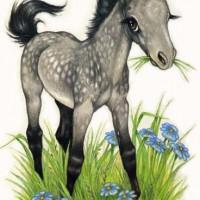 Художница Робин Джеймс (Robin James) - фото Dappled-Grey72dpism-200x200, главная Фото , конный журнал EquiLIfe