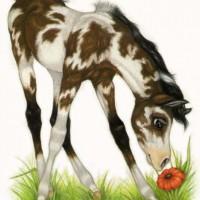 Художница Робин Джеймс (Robin James) - фото Paint72dpism-200x200, главная Фото , конный журнал EquiLIfe