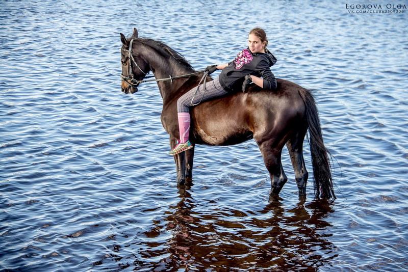 Популярная конная группа ВКонтакте, интервью с Софией Гофман - фото beHHmOc0-34, главная Интервью , конный журнал EquiLIfe