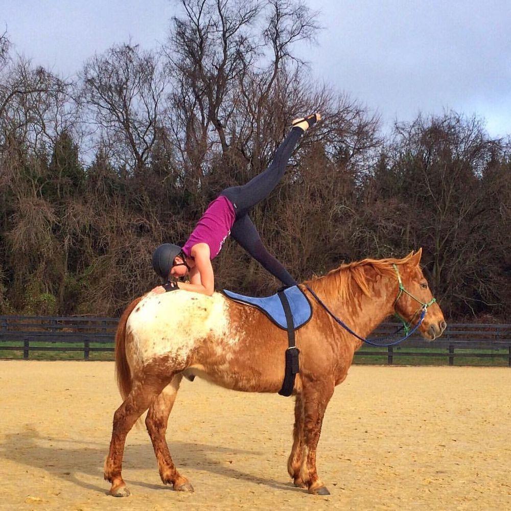 Йога верхом - фото dolphin1, главная Конные истории Новости , конный журнал EquiLIfe