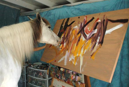 Лошади-художники - фото loshad-risuet, главная Интересное о лошади Поведение лошади Разное , конный журнал EquiLIfe