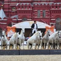 Конный фотограф Александра Бабичева - фото pbbWjLQhABo-200x200, главная Фото , конный журнал EquiLIfe