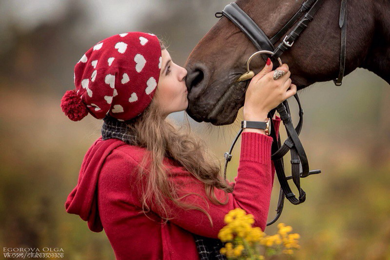 Популярная конная группа ВКонтакте, интервью с Софией Гофман - фото v1xixa1NUsY, главная Интервью , конный журнал EquiLIfe