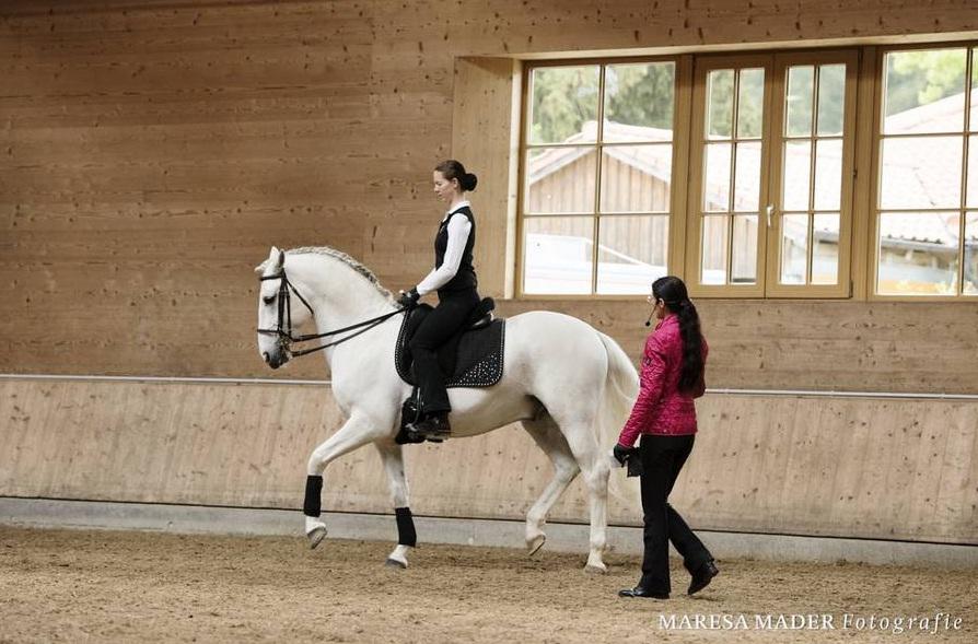 Шестой международный семинар от Ани Беран! - фото 124, Новости , конный журнал EquiLIfe