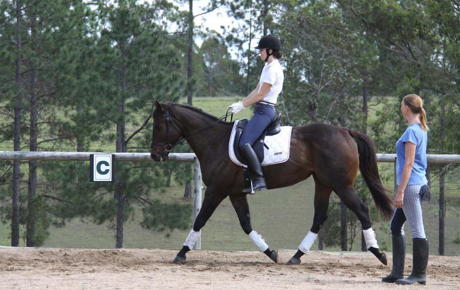 А вот и не страшно! - фото Dressage-Lessons, главная Тренинг , конный журнал EquiLIfe