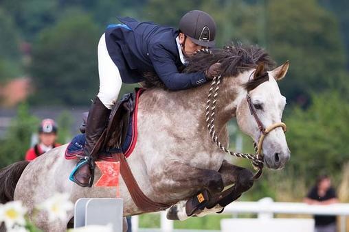 Юрген Краков - конкурист, выступающий на безтрензельном босале  - фото 990e1aca011, главная Разное Тренинг , конный журнал EquiLIfe