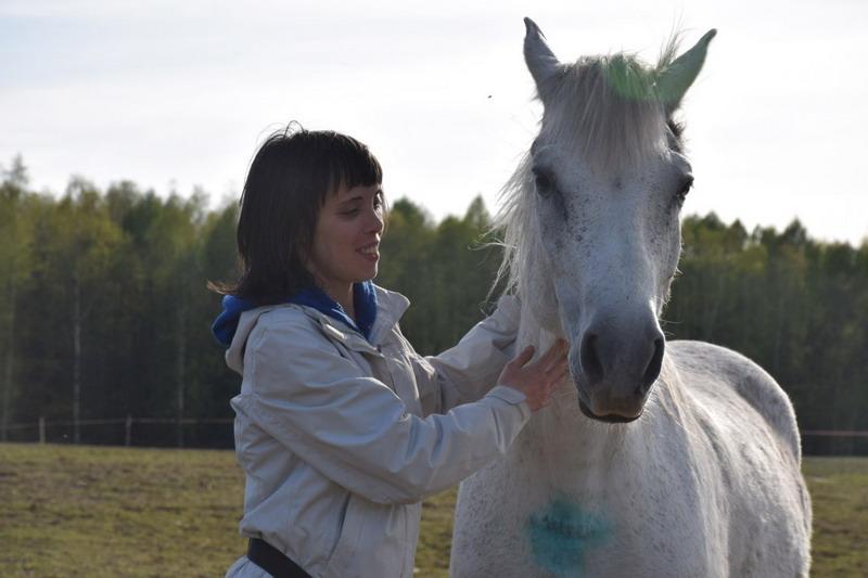 Интервью. Содержание жеребцов. Практический опыт. - фото OuKcudy4jkQ, главная Интервью , конный журнал EquiLIfe