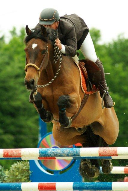 Юрген Краков - конкурист, выступающий на безтрензельном босале  - фото krackow_looping_aho_15_01, главная Разное Тренинг , конный журнал EquiLIfe