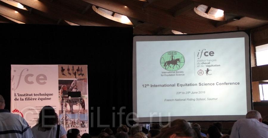 Отчет о посещении 12th International Society Equitation Science 2016 - фото IMG_0484_wm, главная События Тренинг , конный журнал EquiLIfe